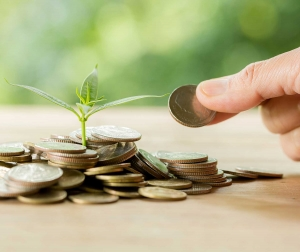 What is tax loss harvesting and how does it save you money